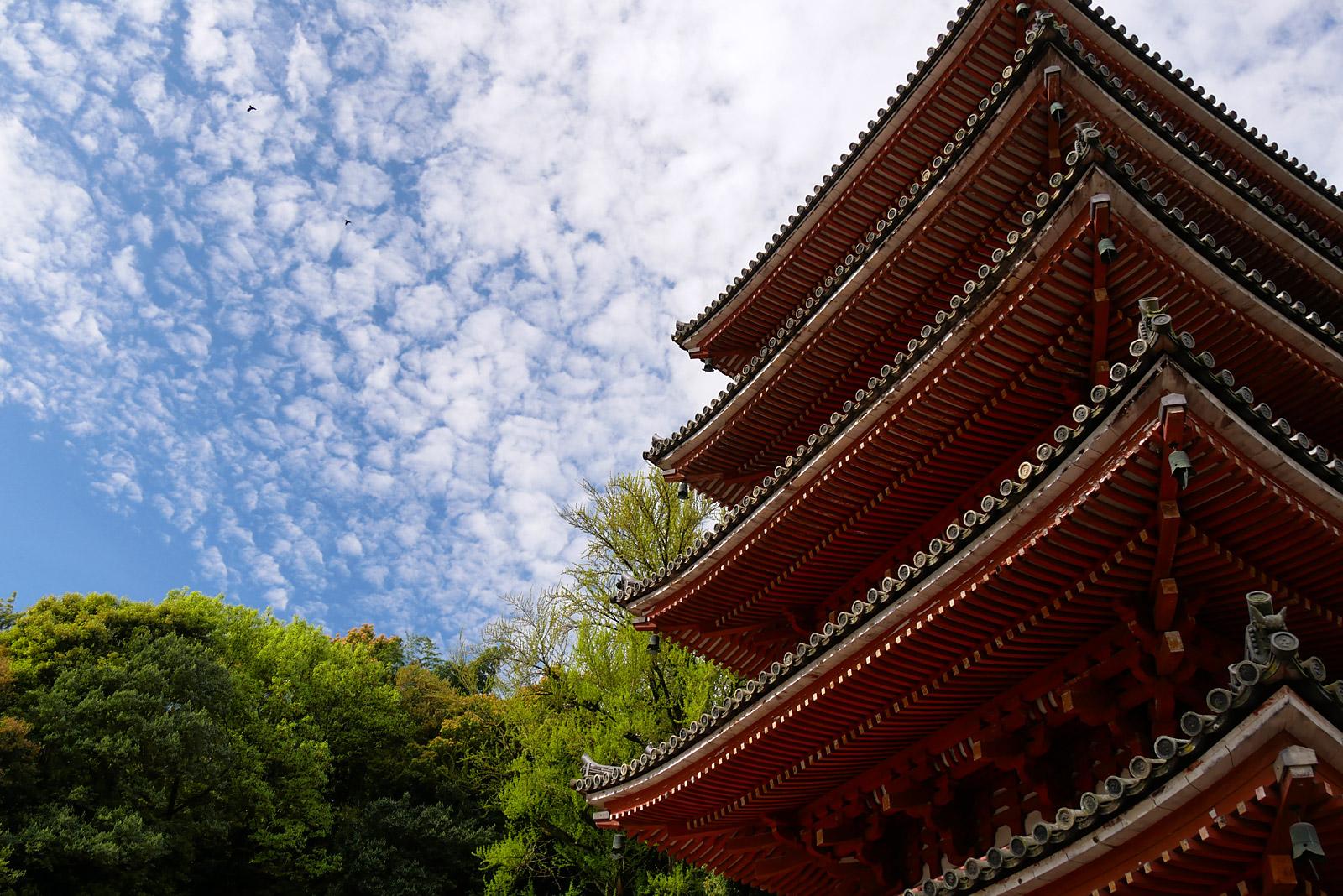 広島の旅2018 ~ 明王院