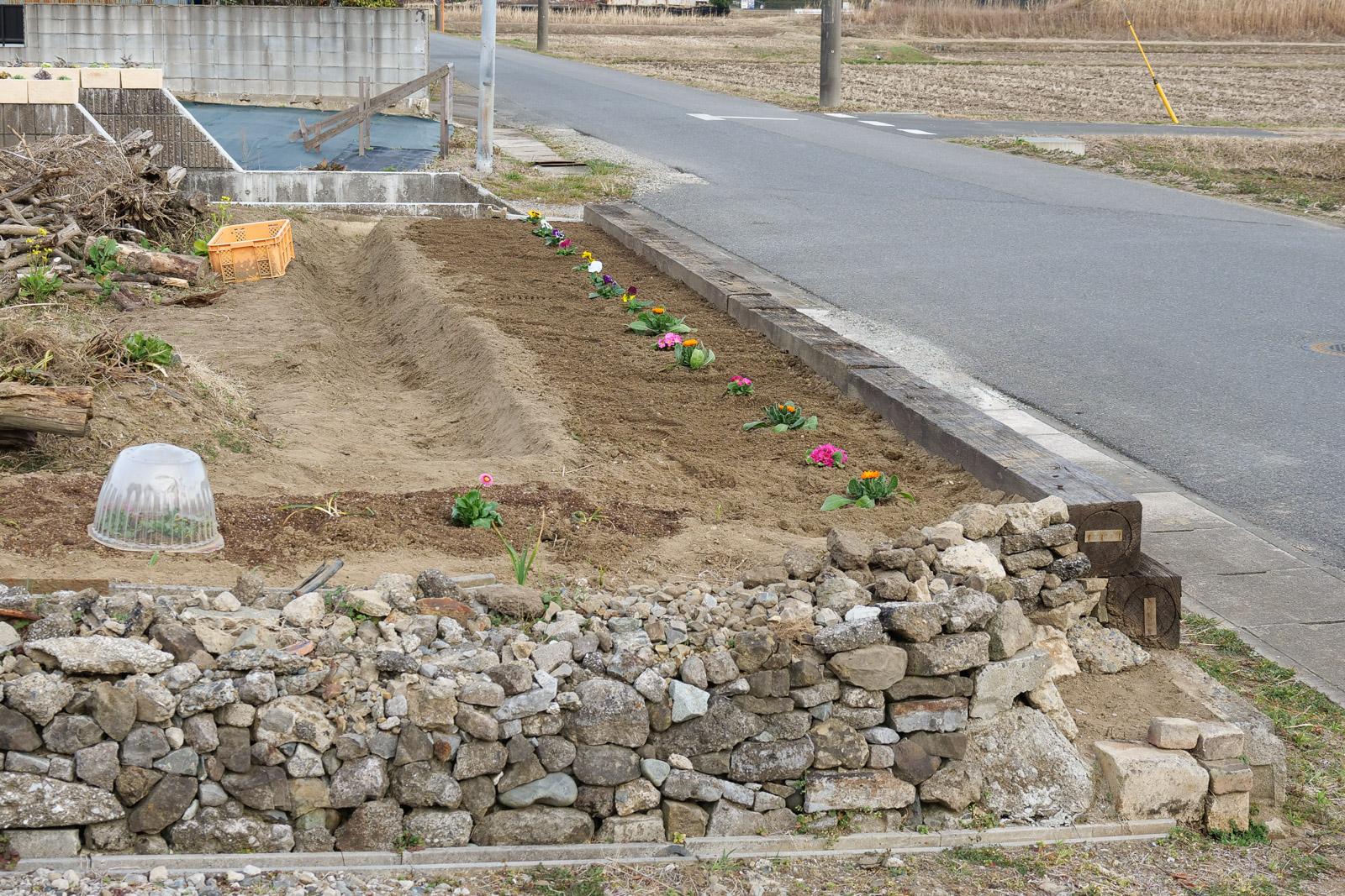 菜園9期目の変革